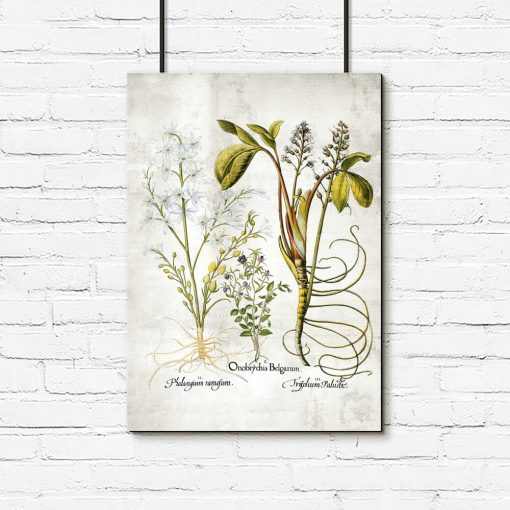 Plakat z plumerią - Kwiat zakochanych do biura
