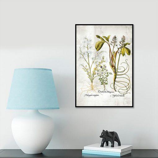 Plakat z plumerią - Kwiat zakochanych do gabinetu