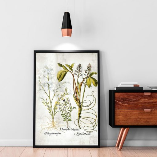 Plakat z plumerią - Kwiat zakochanych do salonu