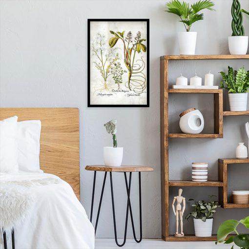 Plakat z plumerią - Kwiat zakochanych do sypialni