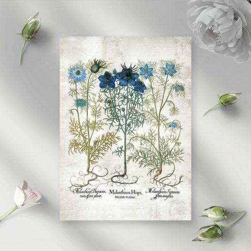 Plakat z polnymi kwiatuszkami w niebieskim kolorze