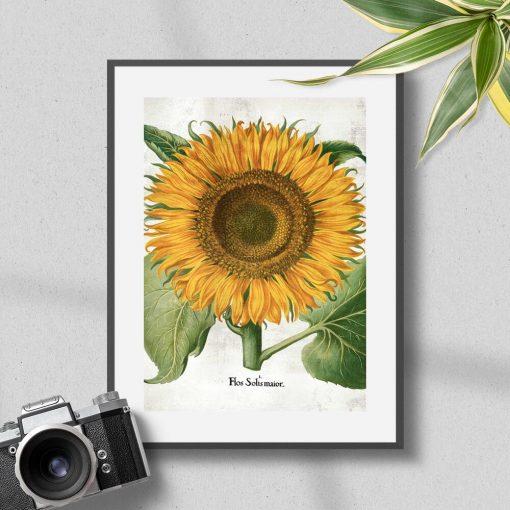 Plakat z żółtym słonecznikiem do powieszenia w poczekalni