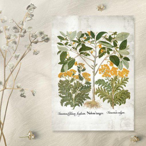 Plakat z żółtymi kwiatkami