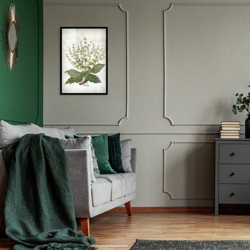 Plakat zielarski z szałwią do sypialni
