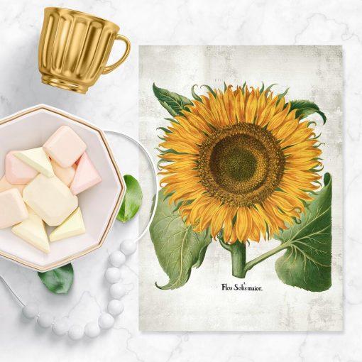 Plakat żółty słonecznik do dekoracji poczekalni