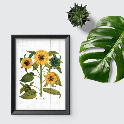 Rustykalny plakat ze słonecznikami