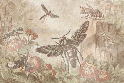 Fototapeta botaniczna z owadami do jadalni