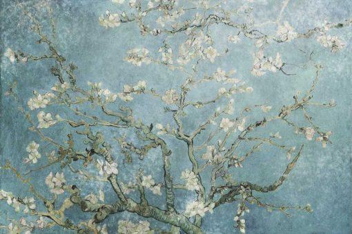 Fototapeta z reprodukcją obrazu - Kwitnący migdał