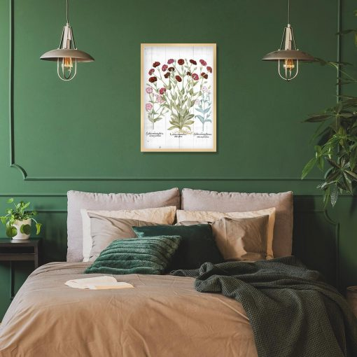 Plakat botaniczny - Firletka kwiecista do sypialni