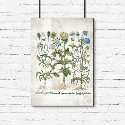 Plakat rustykalny z kwiatami ogrodowymi
