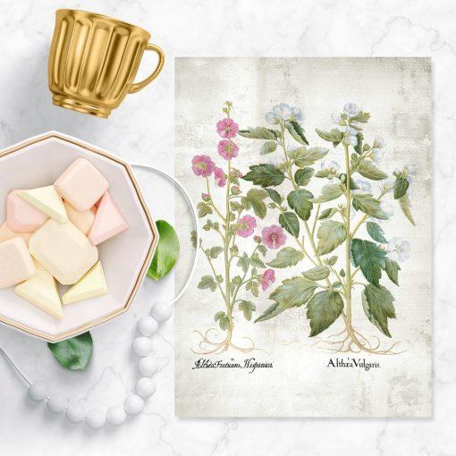Plakat z kwiatami białymi do poczekalni