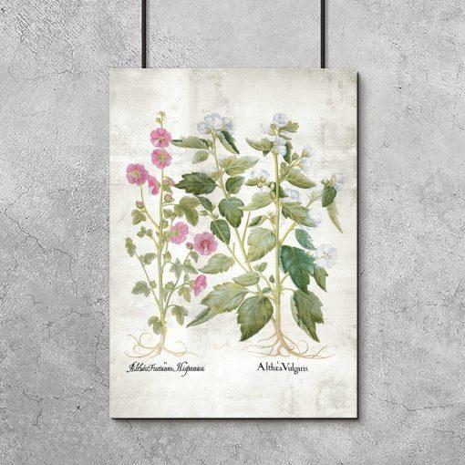 Plakat z kwiatami różowymi do poczekalni