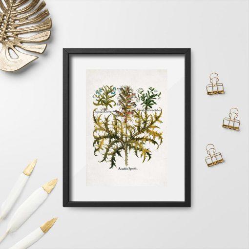 Plakat z liśćmi akantu