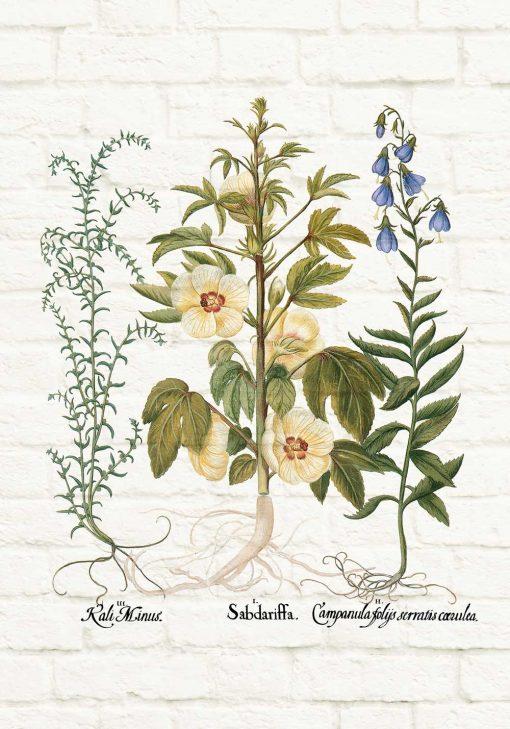 Plakat z motywem roślin na tle cegieł