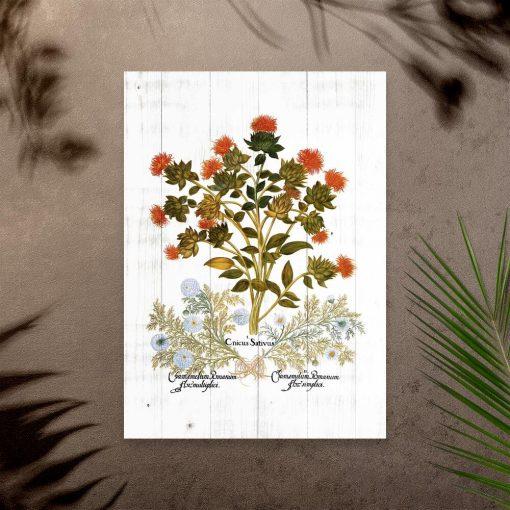 Plakat zielny z drapaczem i rumiankiem