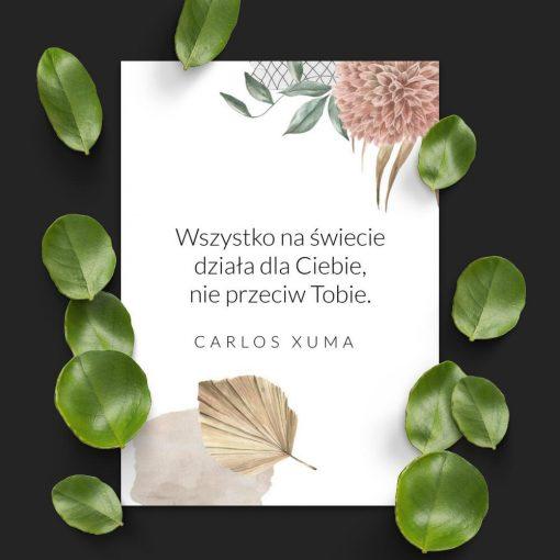 Plakat z życiowym motto wg Xuma