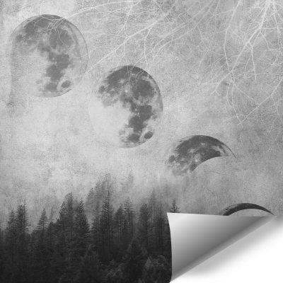 Szara tapeta z księżycem